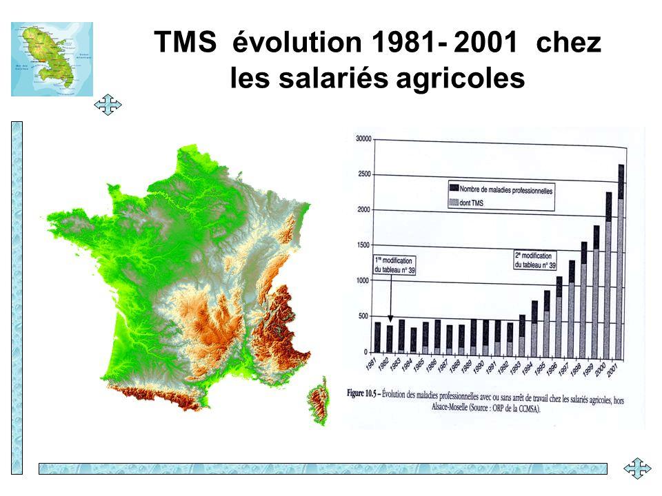 TMS évolution 1981- 2001 chez les salariés agricoles