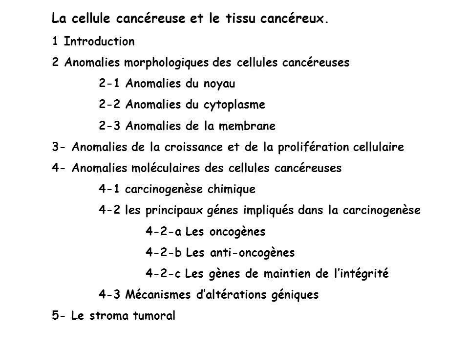 La cellule cancéreuse et le tissu cancéreux.
