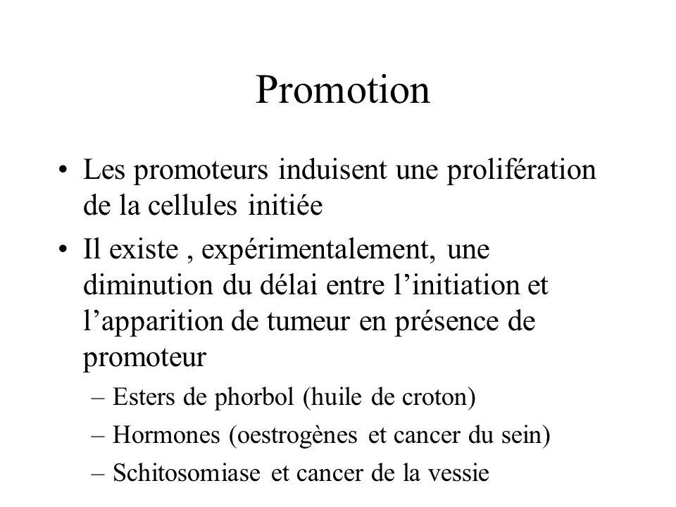 Promotion Les promoteurs induisent une prolifération de la cellules initiée.