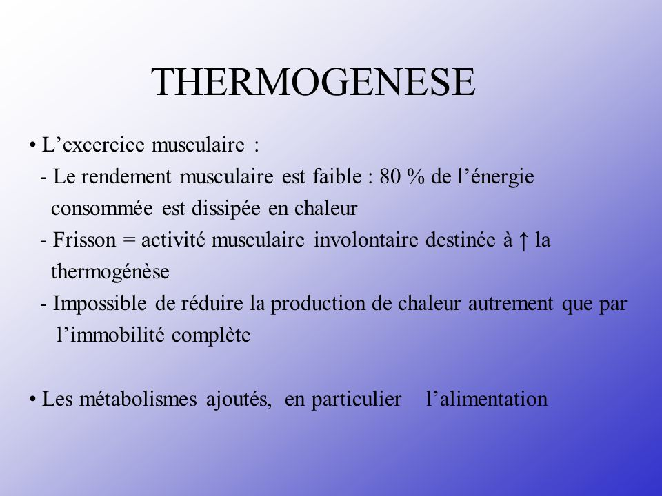 THERMOGENESE • L'excercice musculaire :