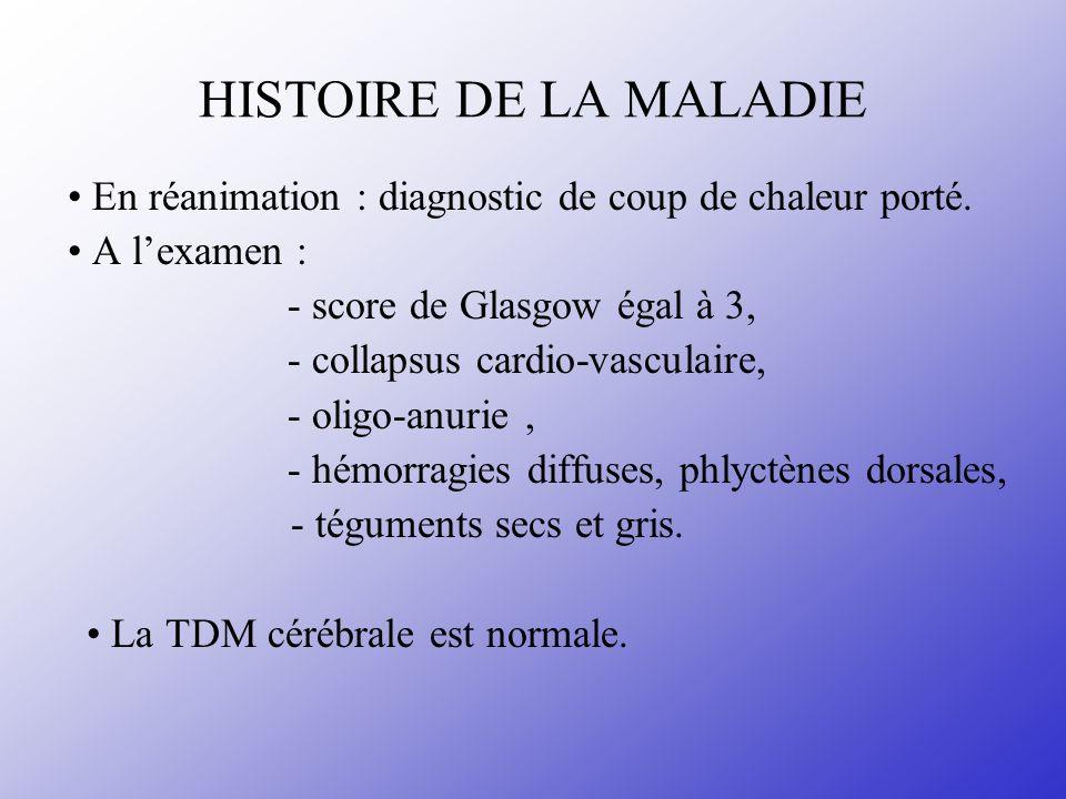 HISTOIRE DE LA MALADIE • En réanimation : diagnostic de coup de chaleur porté. • A l'examen : - score de Glasgow égal à 3,