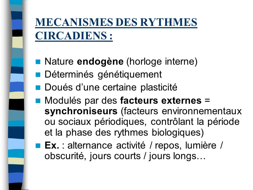MECANISMES DES RYTHMES CIRCADIENS :