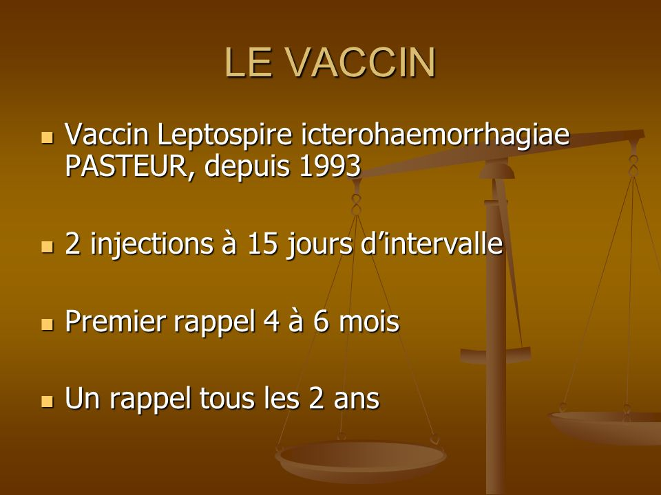 LE VACCIN Vaccin Leptospire icterohaemorrhagiae PASTEUR, depuis 1993