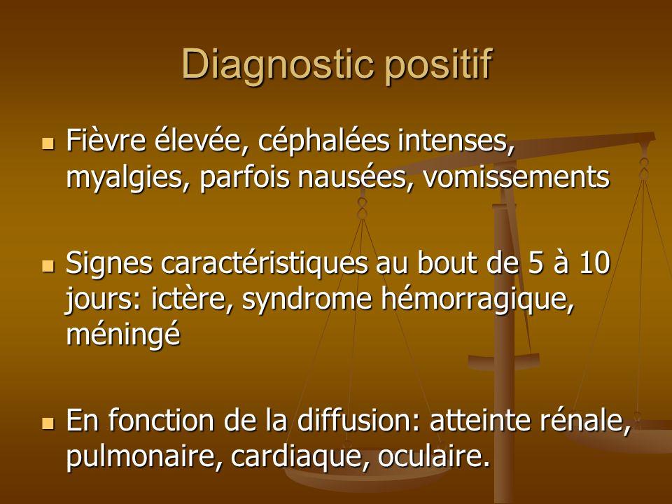 Diagnostic positif Fièvre élevée, céphalées intenses, myalgies, parfois nausées, vomissements.