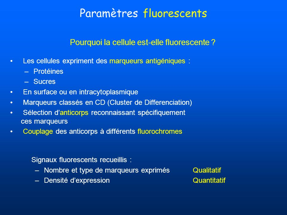 Paramètres fluorescents
