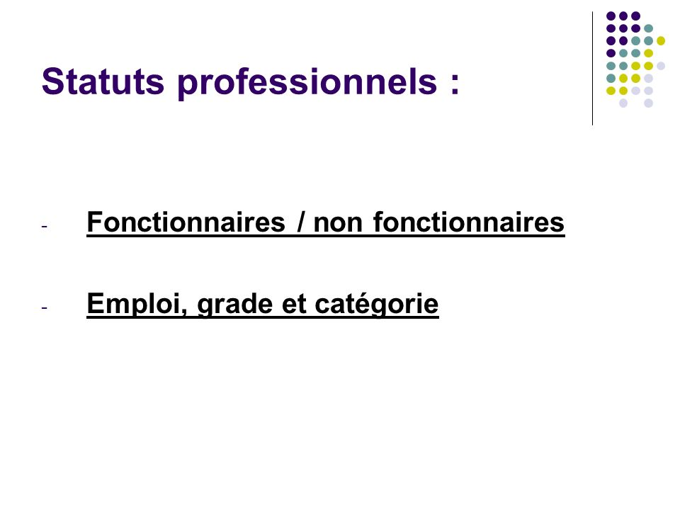 Statuts professionnels :