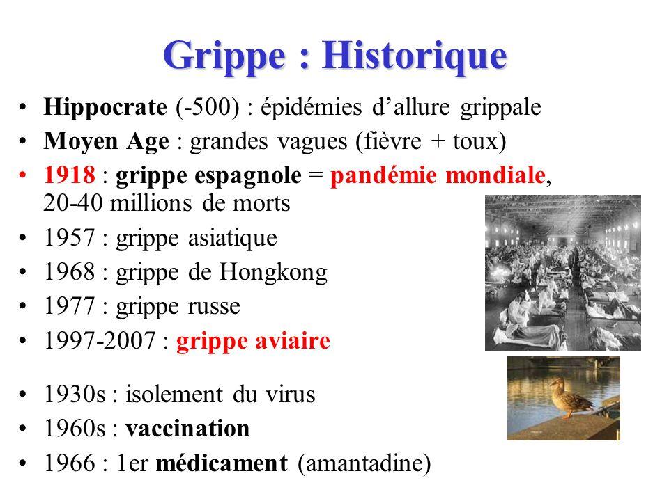 Grippe : Historique Hippocrate (-500) : épidémies d'allure grippale