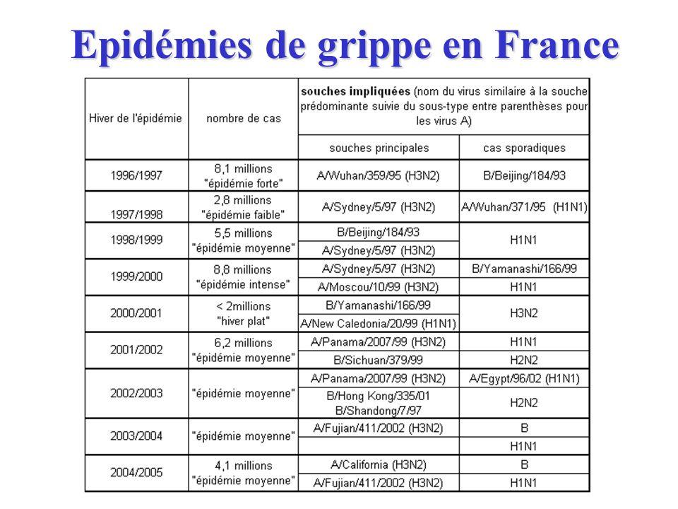 Epidémies de grippe en France