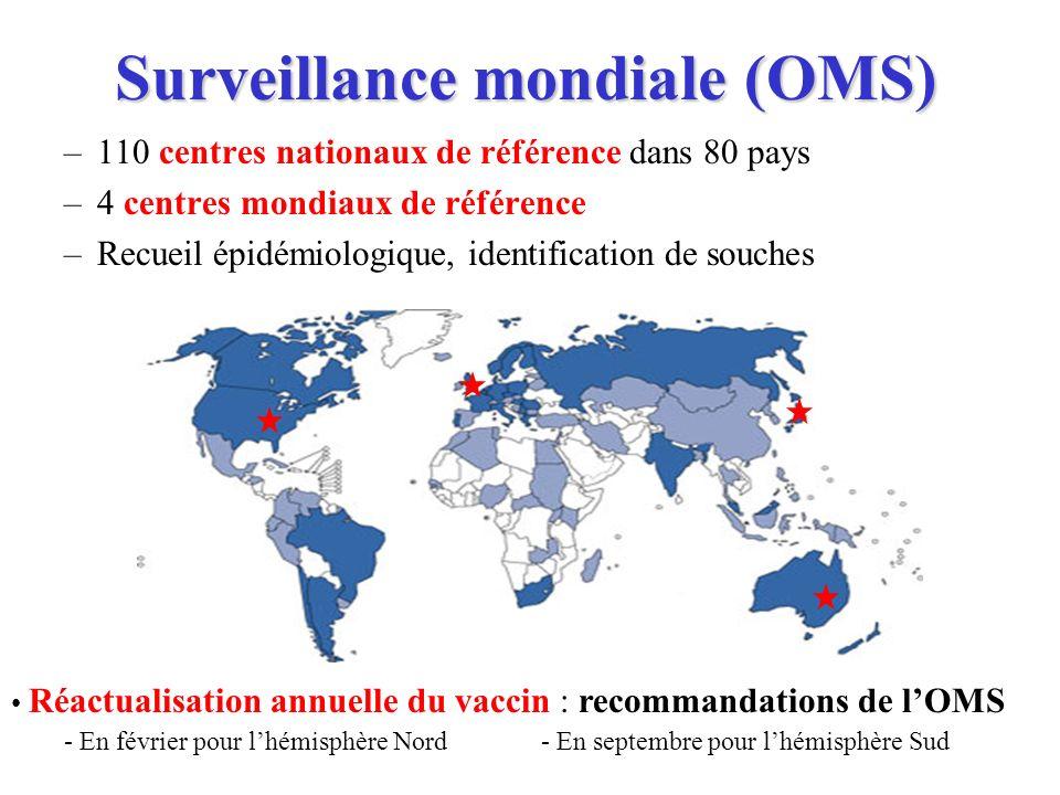 Surveillance mondiale (OMS)