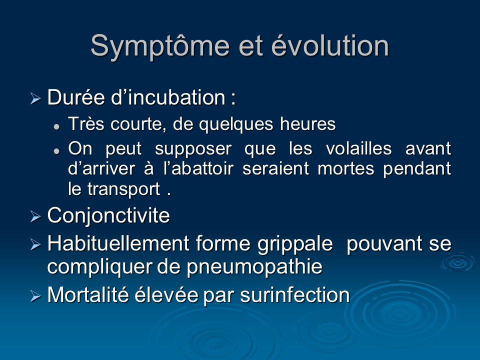 Symptôme et évolution Durée d'incubation : Conjonctivite