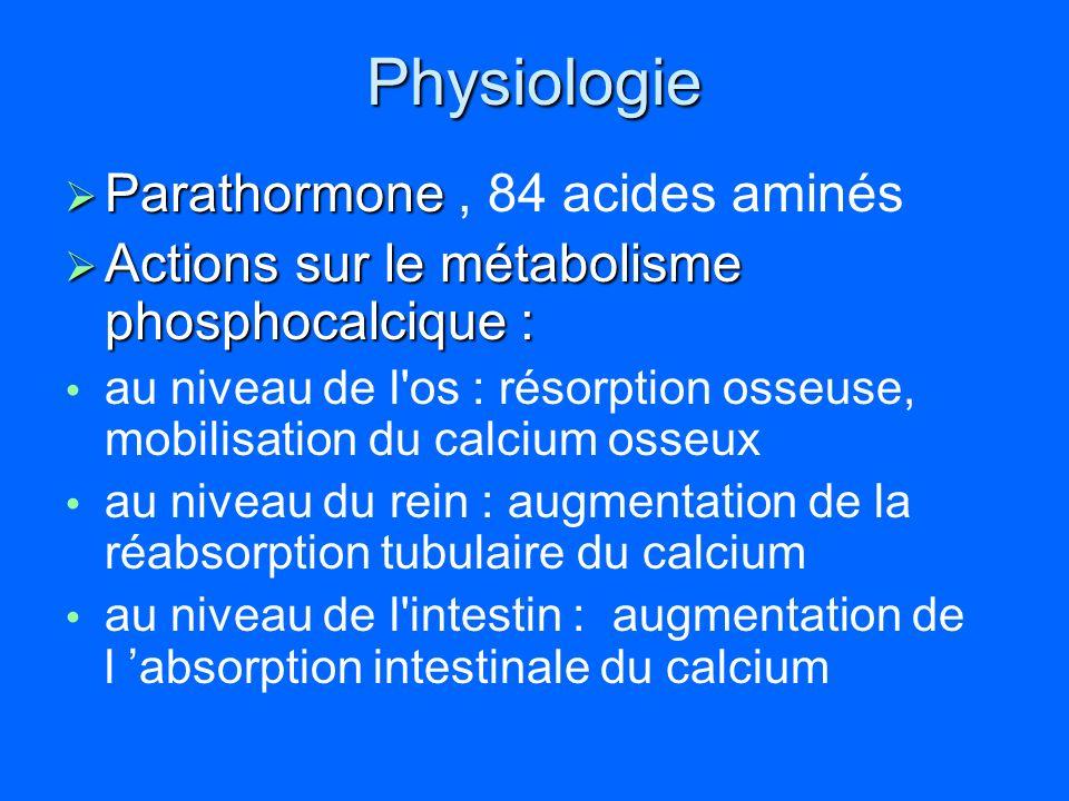 Physiologie Parathormone , 84 acides aminés