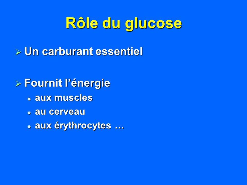Rôle du glucose Un carburant essentiel Fournit l'énergie aux muscles