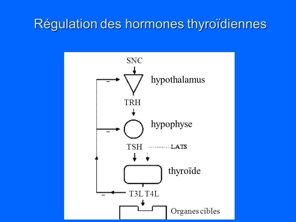 Régulation des hormones thyroïdiennes