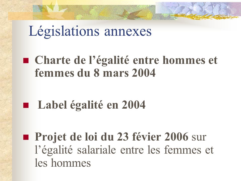 Législations annexes Charte de l'égalité entre hommes et femmes du 8 mars 2004. Label égalité en 2004.