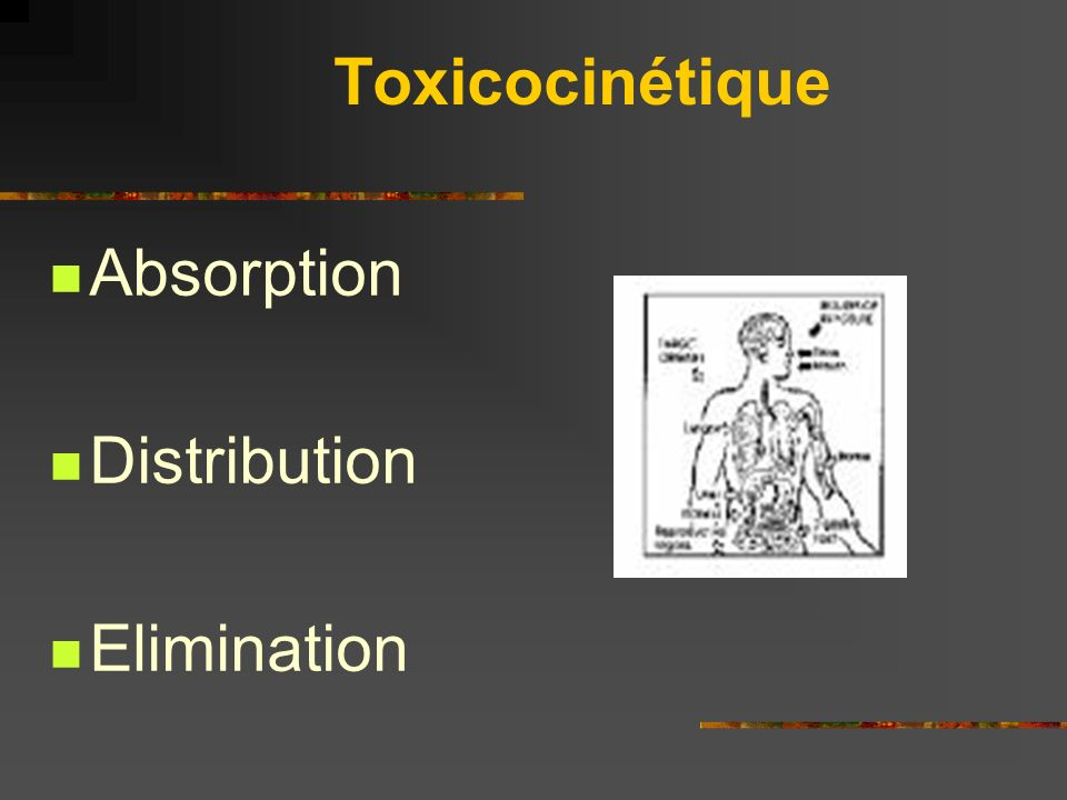 Toxicocinétique Absorption Distribution Elimination