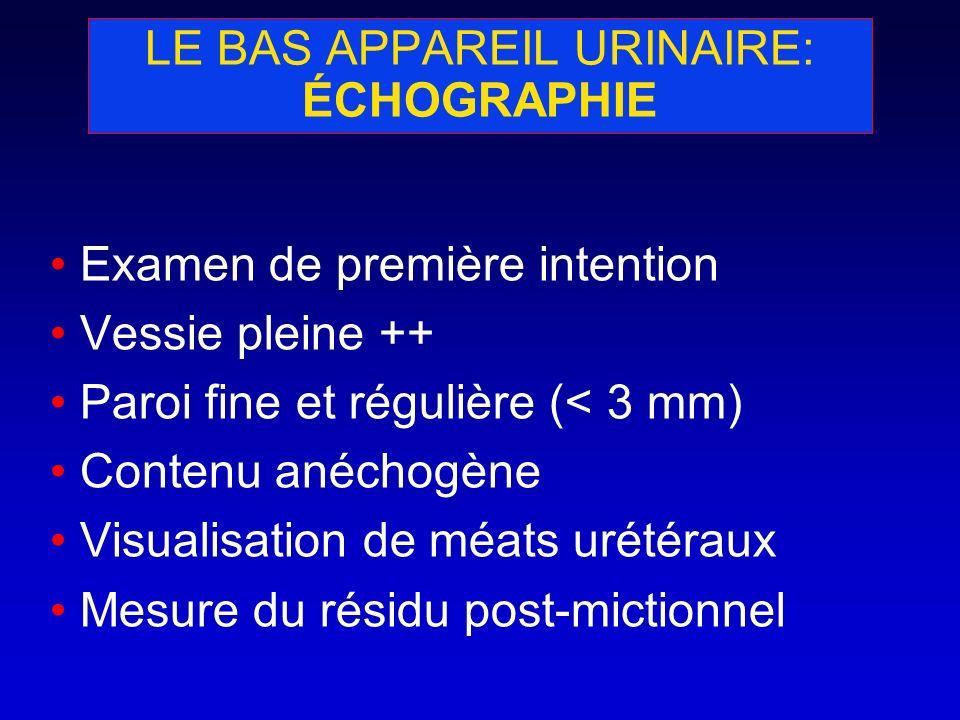 LE BAS APPAREIL URINAIRE: ÉCHOGRAPHIE