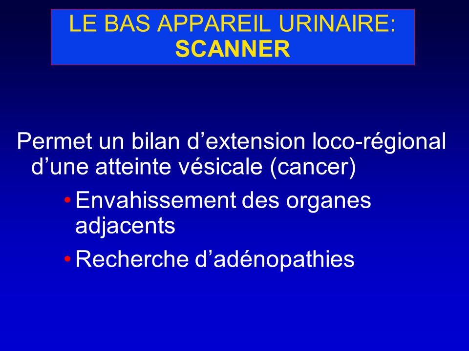 LE BAS APPAREIL URINAIRE: SCANNER