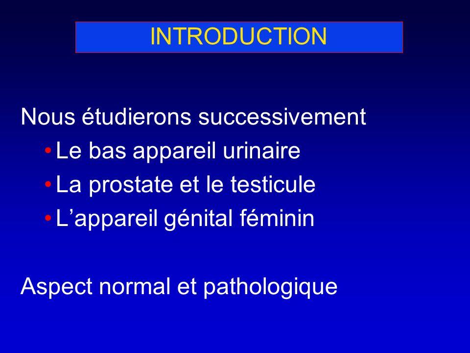 INTRODUCTION Nous étudierons successivement. Le bas appareil urinaire. La prostate et le testicule.