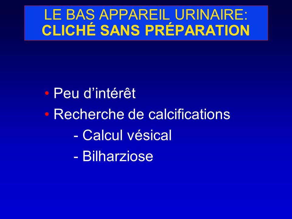 LE BAS APPAREIL URINAIRE: CLICHÉ SANS PRÉPARATION