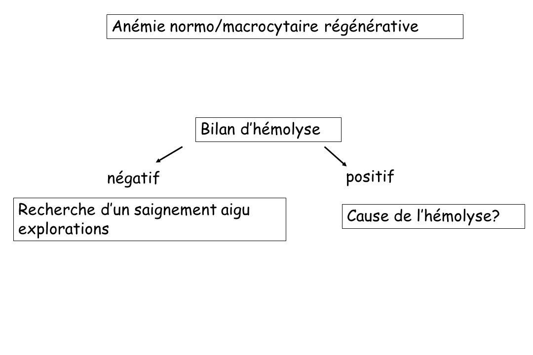 Anémie normo/macrocytaire régénérative
