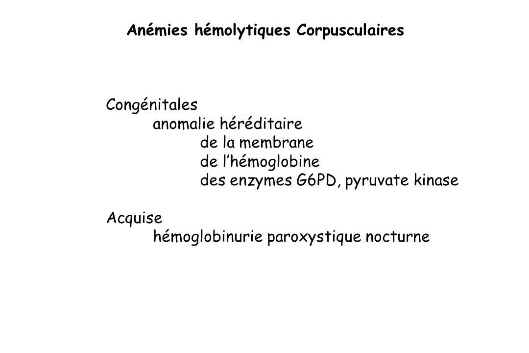 Anémies hémolytiques Corpusculaires