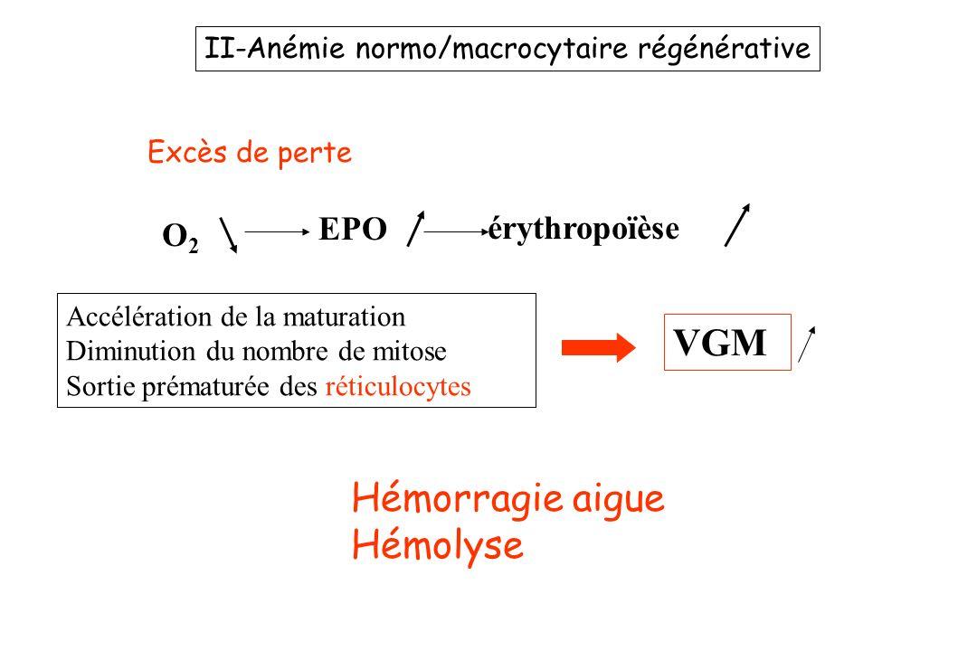 VGM Hémorragie aigue Hémolyse EPO érythropoïèse O2