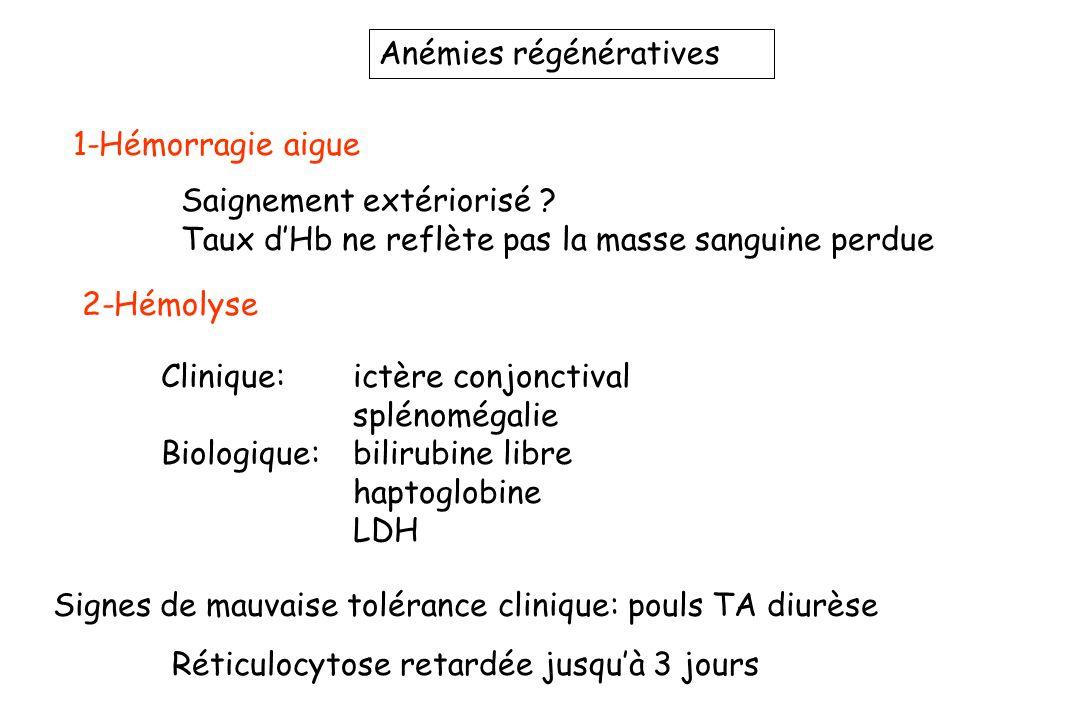 Anémies régénératives
