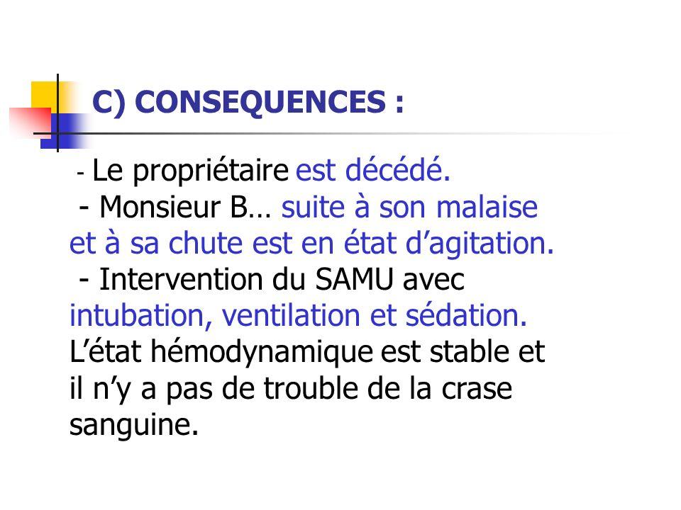 C) CONSEQUENCES : - Le propriétaire est décédé. - Monsieur B… suite à son malaise et à sa chute est en état d'agitation.