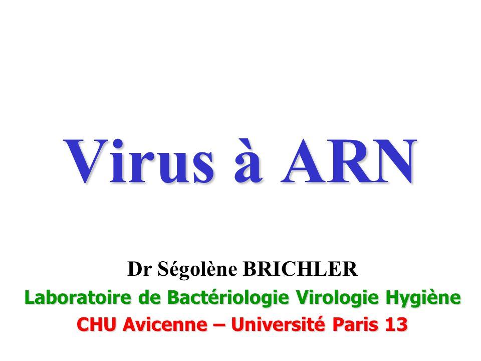 Virus à ARN Dr Ségolène BRICHLER
