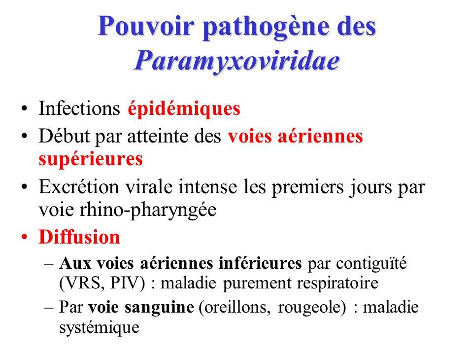 Pouvoir pathogène des Paramyxoviridae
