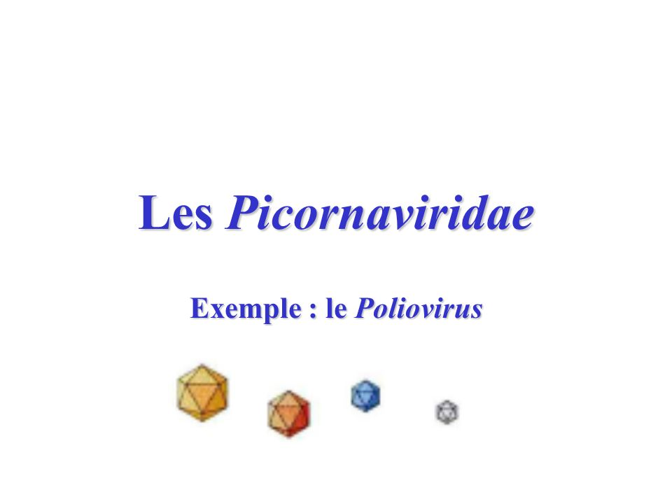 Exemple : le Poliovirus
