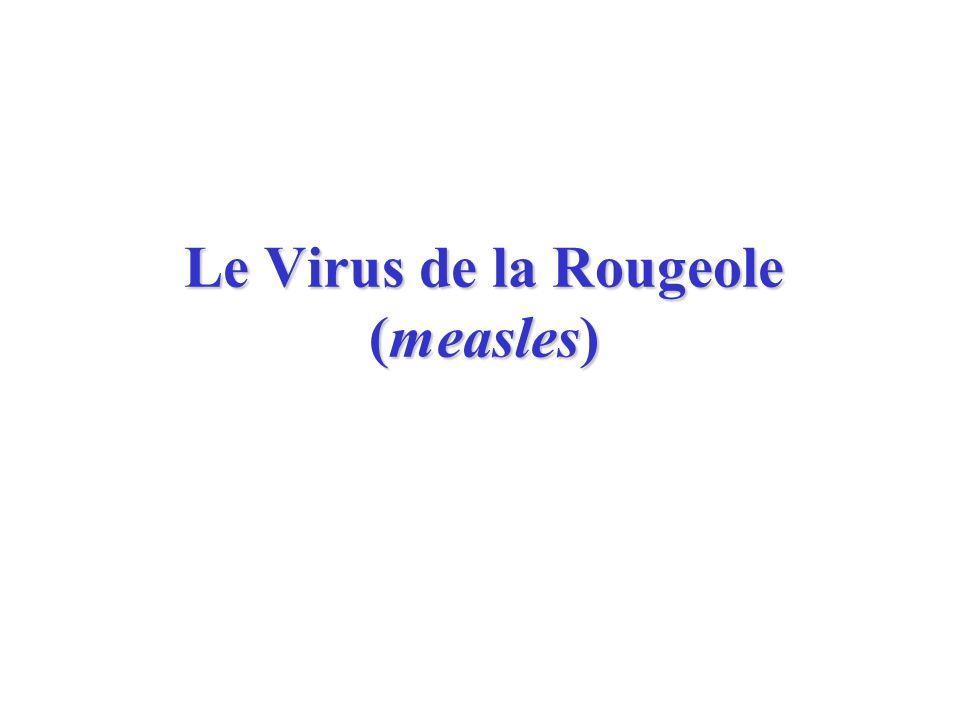 Le Virus de la Rougeole (measles)