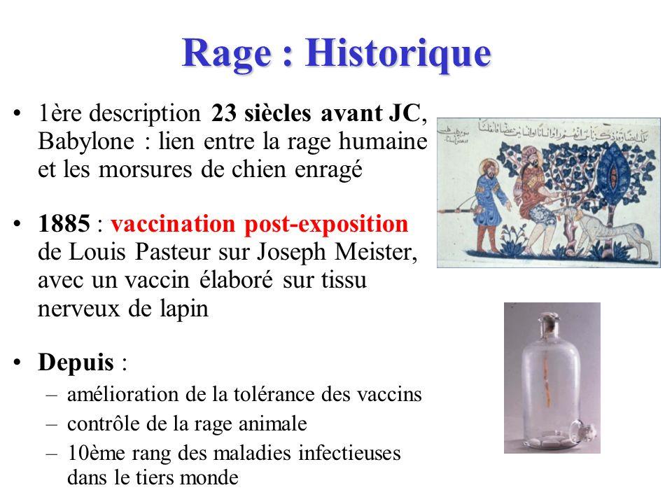 Rage : Historique 1ère description 23 siècles avant JC, Babylone : lien entre la rage humaine et les morsures de chien enragé.