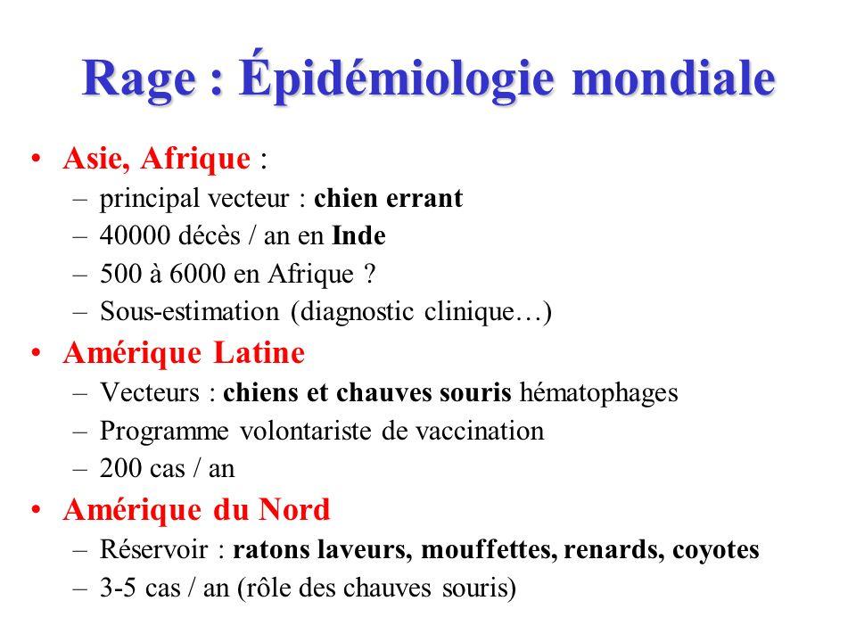 Rage : Épidémiologie mondiale