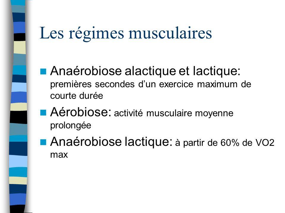 Les régimes musculaires