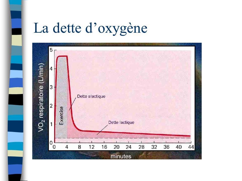 La dette d'oxygène