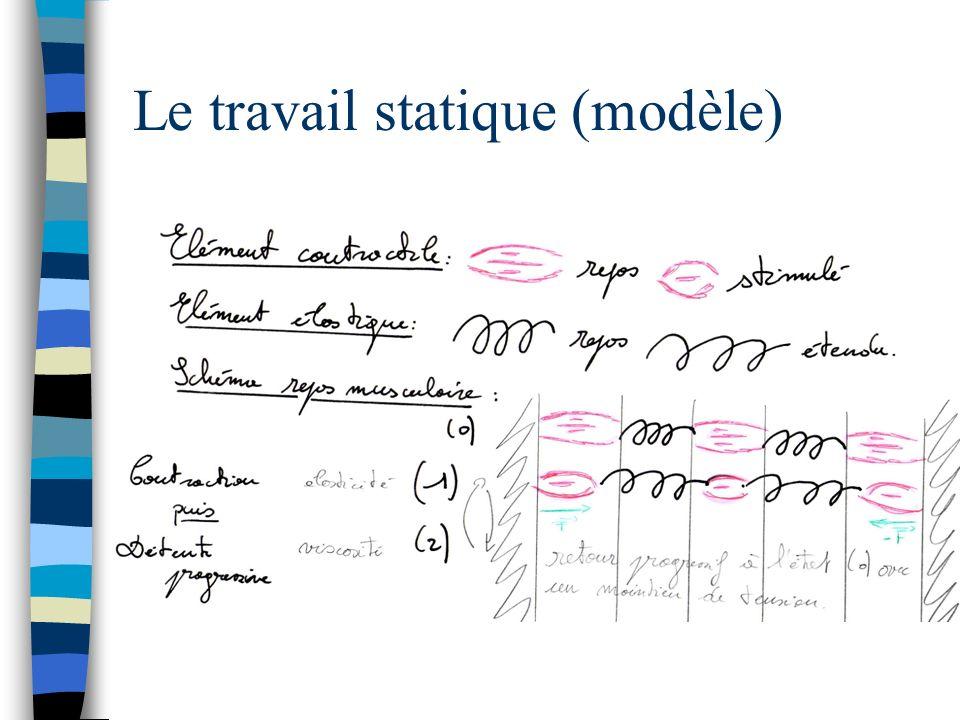 Le travail statique (modèle)