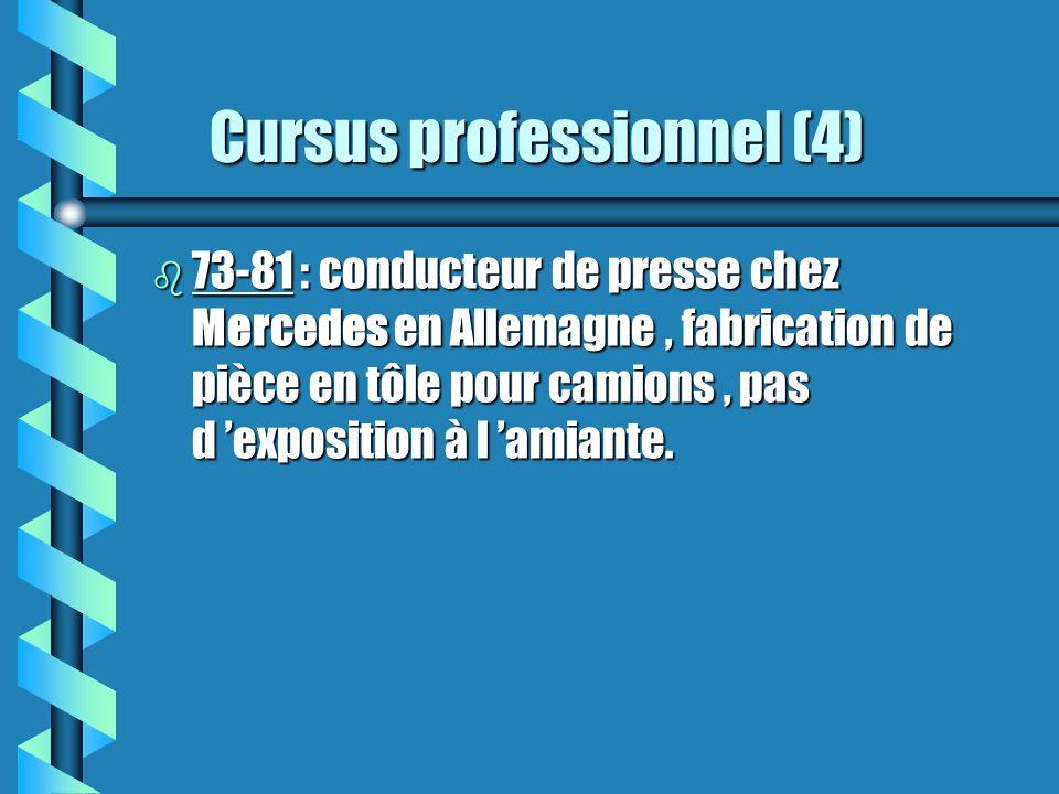 Cursus professionnel (4)