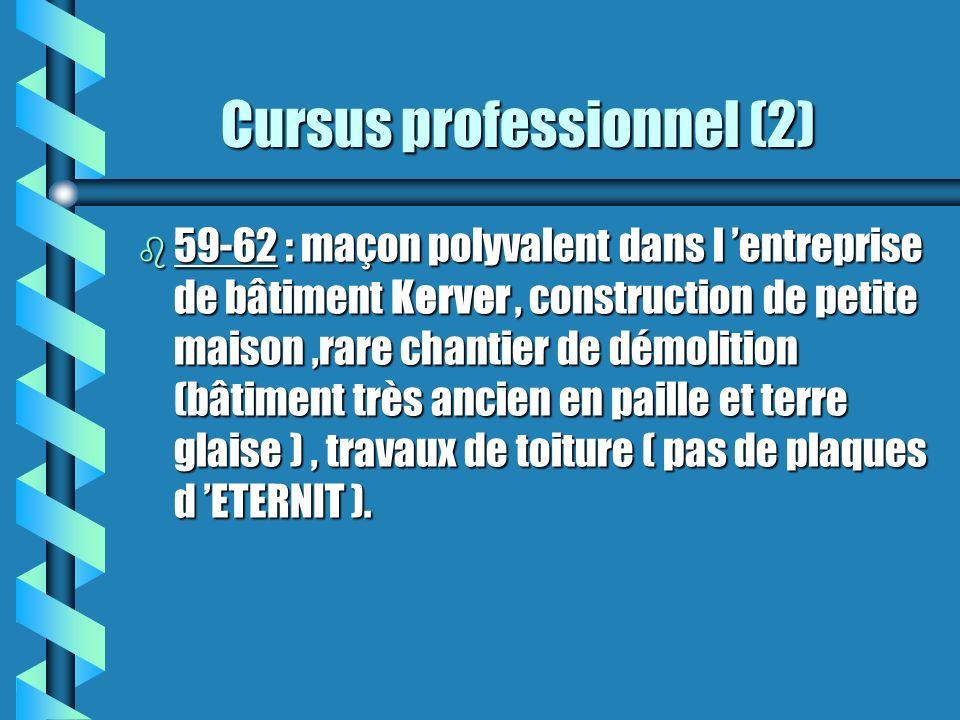Cursus professionnel (2)
