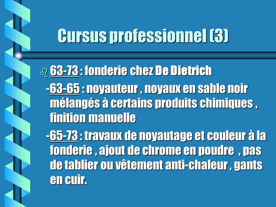 Cursus professionnel (3)