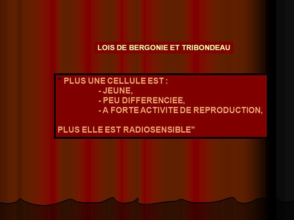 - A FORTE ACTIVITE DE REPRODUCTION, PLUS ELLE EST RADIOSENSIBLE