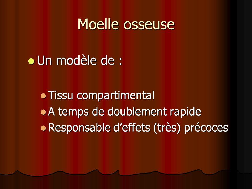 Moelle osseuse Un modèle de : Tissu compartimental