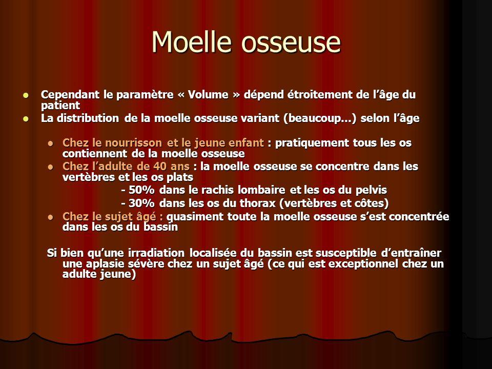 Moelle osseuse Cependant le paramètre « Volume » dépend étroitement de l'âge du patient.