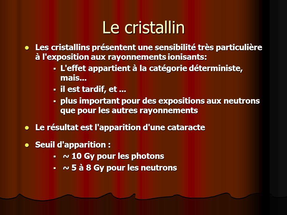 Le cristallin Les cristallins présentent une sensibilité très particulière à l exposition aux rayonnements ionisants: