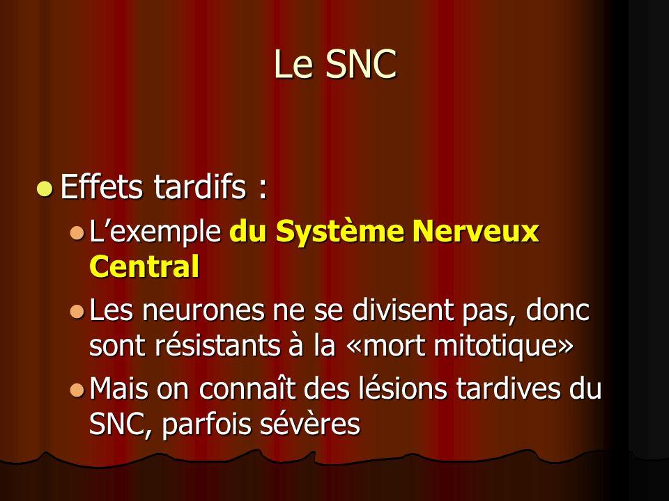 Le SNC Effets tardifs : L'exemple du Système Nerveux Central