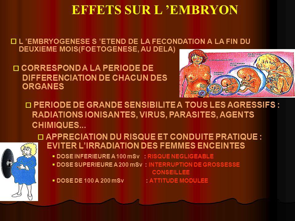 EFFETS SUR L 'EMBRYON L 'EMBRYOGENESE S 'ETEND DE LA FECONDATION A LA FIN DU. DEUXIEME MOIS(FOETOGENESE, AU DELA)