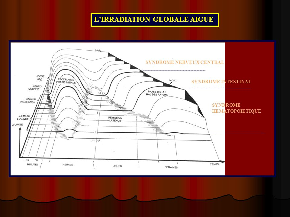 L IRRADIATION GLOBALE AIGUE