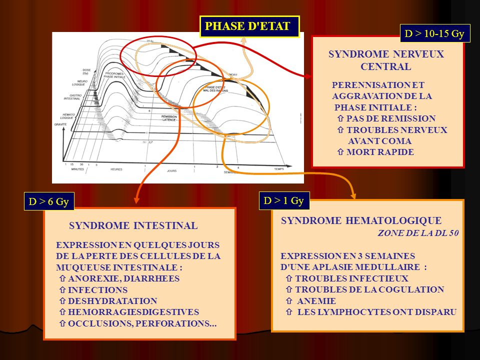 PHASE D ETAT D > 10-15 Gy SYNDROME NERVEUX CENTRAL D > 6 Gy