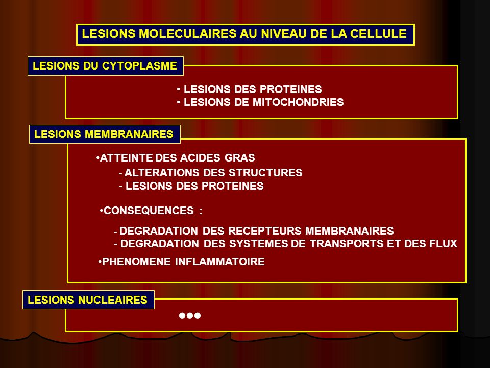 ••• LESIONS MOLECULAIRES AU NIVEAU DE LA CELLULE LESIONS DU CYTOPLASME