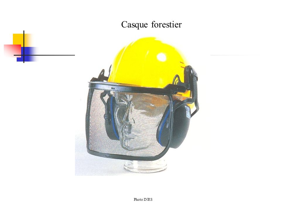 Casque forestier Photo INRS